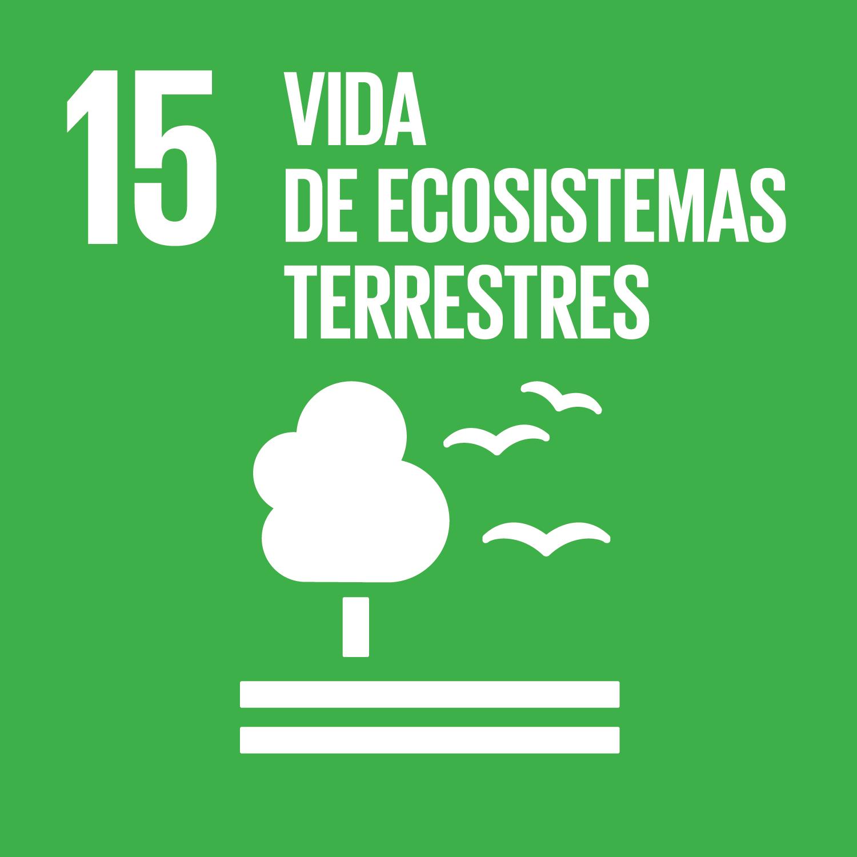 ODS 15.Vida de ecosistemas terrestres