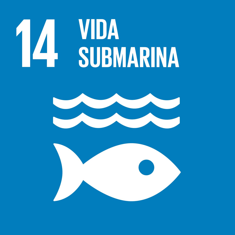 ODS 14.Vida submarina